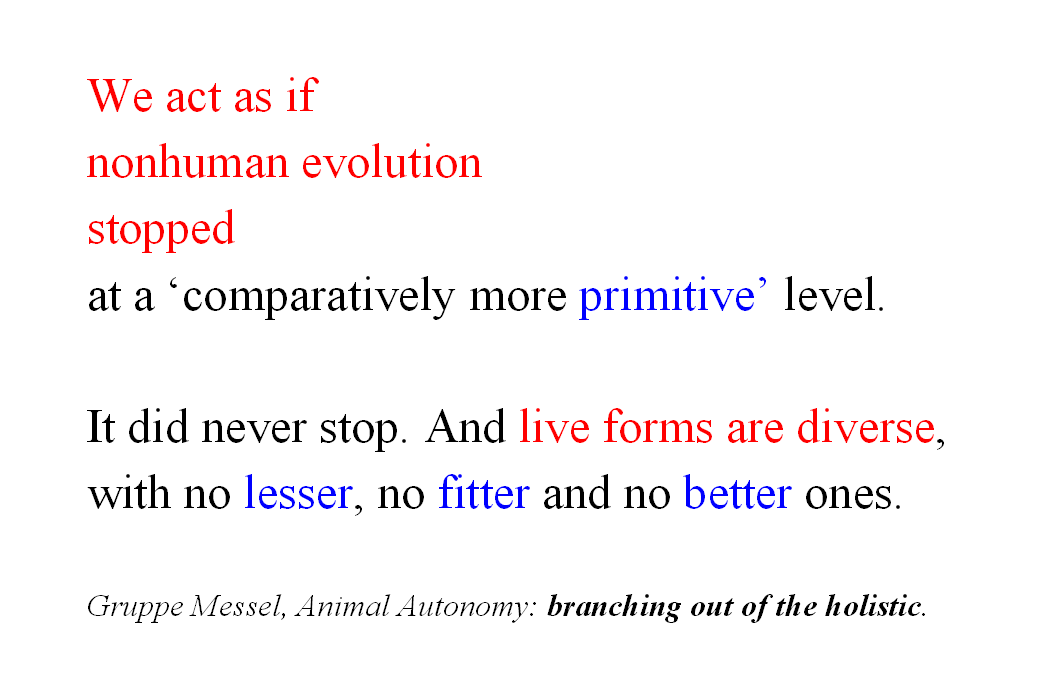 nonhuman_evolution_1a
